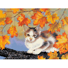 Коте на есенно дърво
