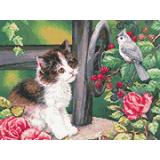 Коте на кладенеца