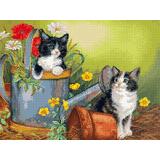 Котета в градината